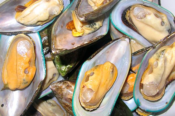Мидии, морепродукты купить в Казанис доставкой, товары для суши, продукты для роллов, продукты для пиццы